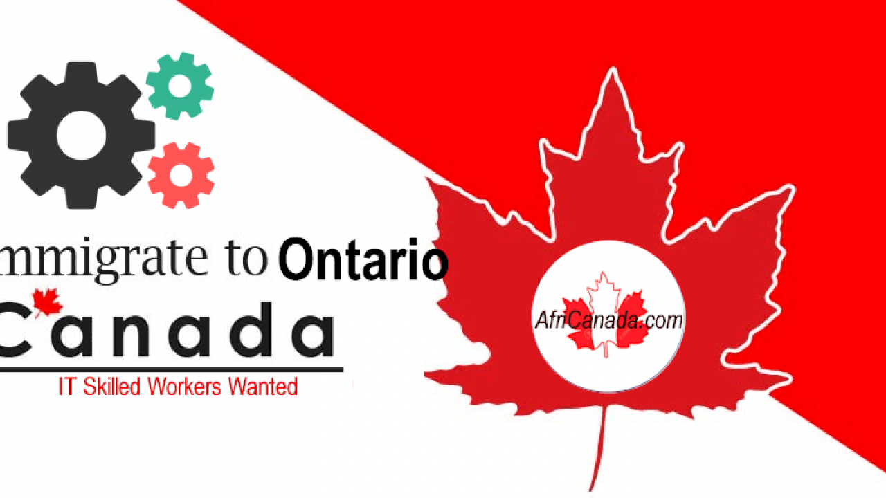 954 It Candidates Invited For Pr In Latest Oinp Draw Canada Visa Immigration