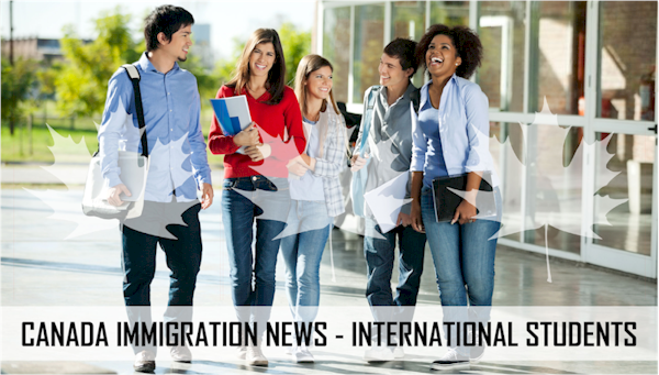 canada international student enrolments